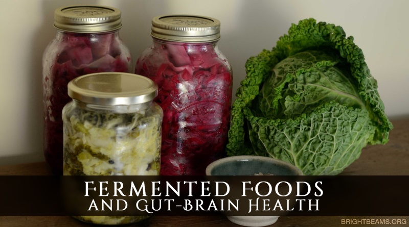 Fermented Foods and Gut-Brain Health - jars of sauerkraut, a head of cabbage and a bowl of salt