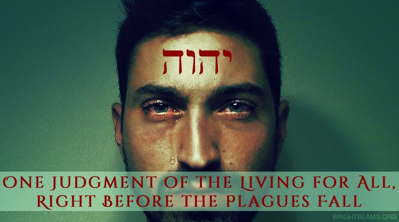 One Judgment of the Living for All, Right Before the Plagues Fall - man weeping with the name of God on his forehead