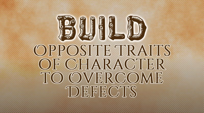 Build Opposite Traits of Character to Overcome Defects