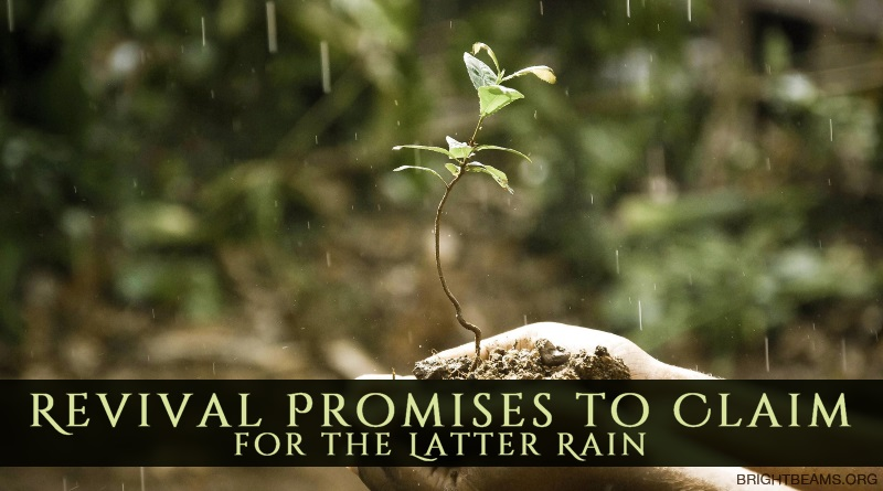 Revival Promises to Claim for the Latter Rain - hands holding a young plant in the rain