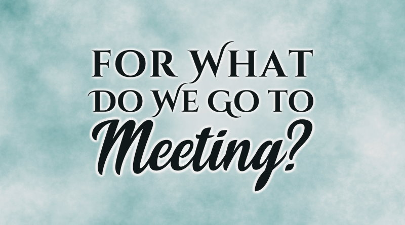 For What Do We Go to Meeting?